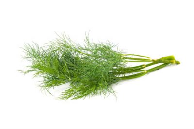 Pure Essential Oil of Fennel Sweet