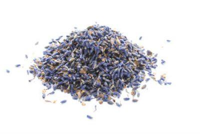 Lavender Bud